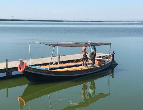 Excursión tercera edad a La Albufera: paseo en barca y Paella